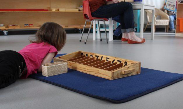 Montessori et ATD Quart Monde : même combat